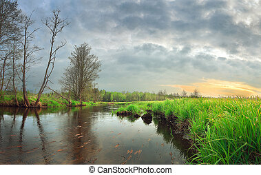 Landscape beautiful morning on the river with green grass on the shore at sunrise