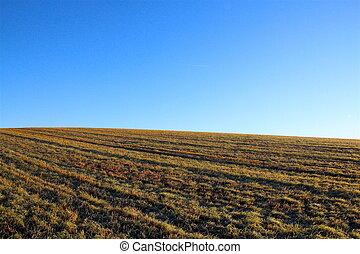 Landscape beautiful simplicity