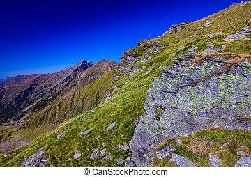 landscape, berg, spoor