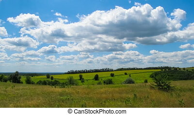 Landscape, clouds moving over a field with trees.