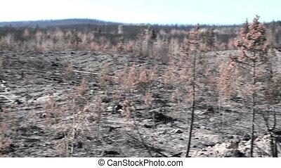Landscape Devastation - pan of devastation from british...
