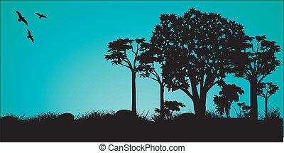 landscape - a  silhouette landscape