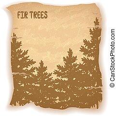 Landscape, Fir Trees Silhouettes
