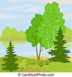 Vector, summer landscape: forest, river and the blue sky with white clouds