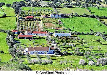 landscape from Monsaraz, Alentejo region, Portugal.
