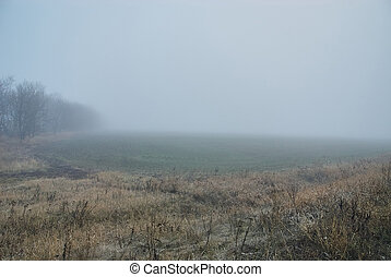 Landscape full of fog