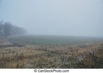Landscape full of fog
