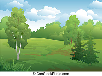 Landscape, green summer forest with fir and birch trees and...