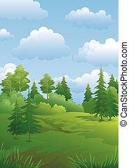Landscape, green summer forest