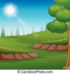 landscape, groene weide, zonlicht, natuur