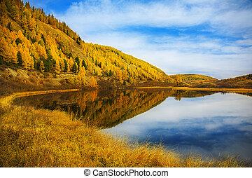 landscape, herfst