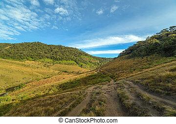 Landscape Hills Horton Plains National Park, Central...