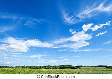 Landscape in a rural countryside environment