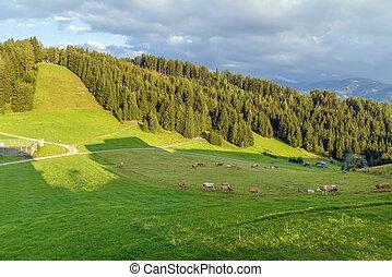 Landscape in Alps, Austria