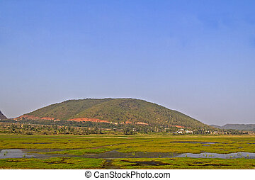 Typical rural landscape in Indian state Andhra pradesh, palms, fields and mountain Eastern Ghat