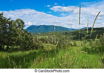 Landscape in Australian hinterland in the summer