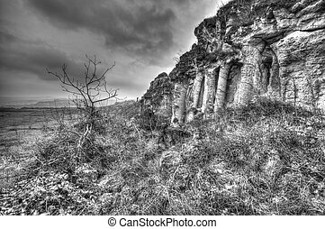 Landscape in black and white