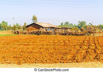 Rural landscape of the farmland near Bahir Dar in Ethiopia