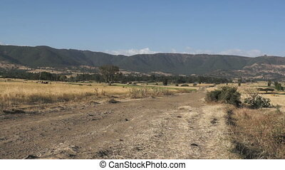 African landscape with fields next to mountain chain in the background