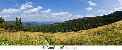 Landscape in Polish Karkonosze mountains