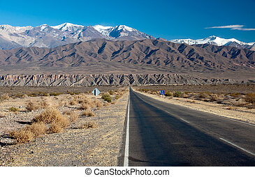 Landscape in northern Argentina - A long straight road in...