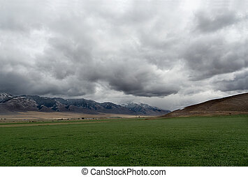 Landscape in Noth Western USA (Montana)