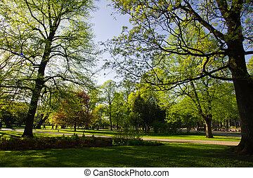 Landscape in park in Riga