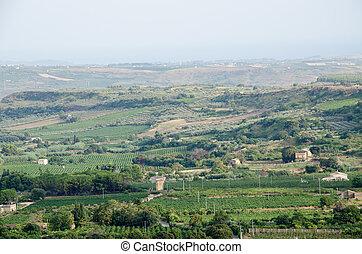 Landscape in Sicily, Menfi (Ag)