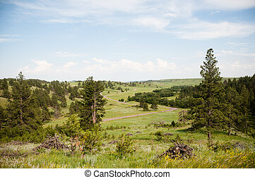 Landscape in South Dakota in the Summer.