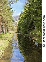 landscape in spring park