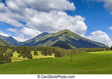 landscape in Styria, Austria