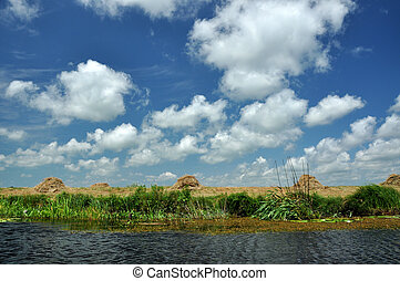 Landscape in the Danube delta, Romania