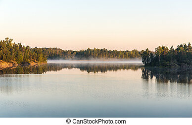morning on a forest lake