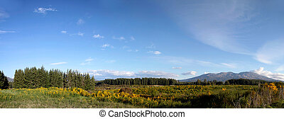 Landscape in the Tongariro National Park