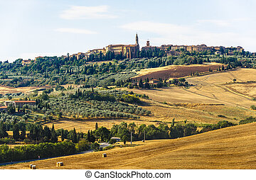 Landscape in Val d'Orcia (Tuscany)