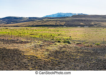 landscape in volcanic area in south of Iceland