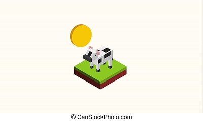 wild life horse cow and bear animals isometric animation hd