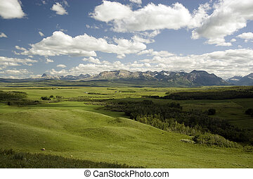 Landscape. - Landscape shot near Waterton Lakes National...