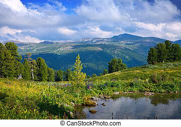 landscape, met, bergen, meer