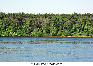landscape, met, bos, en, rivier bankieren