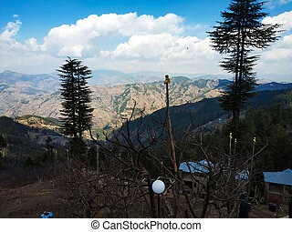 landscape nature with mountain tree and cloudy sky