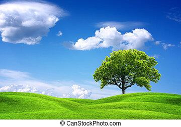 landscape, natuur