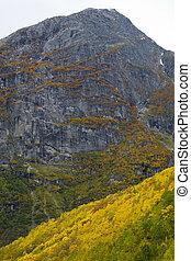 landscape near Melkevollbreen Glacier, Jostedalsbreen