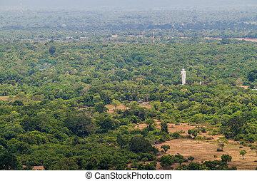 Landscape near Sigiriya Sri Lanka with a statue of standing Buddh