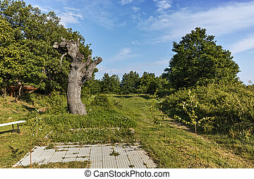 Landscape near Thracian Temple Complex  of Starosel, Plovdiv Region