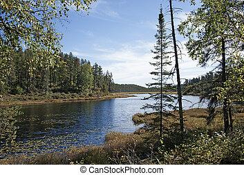 Landscape north of Ontario