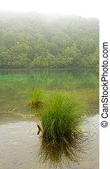 Landscape of a beautiful lake