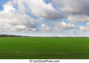 Landscape of a green field and a cloudy sky