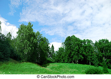 Landscape of a green field with trees and a bright blue sky