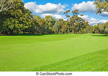 landscape of a green golf field